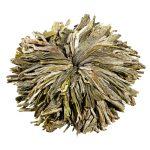 WellTea Peony Flowering Green Tea