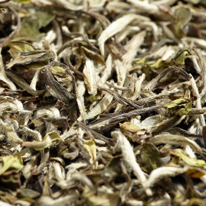 WellTea White Peony Tea
